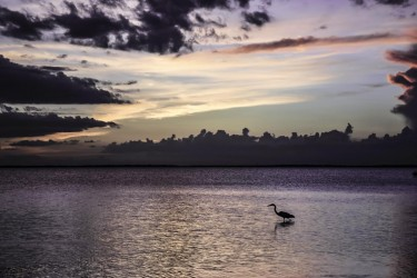 A PGI sunset over Charlotte Harbor.